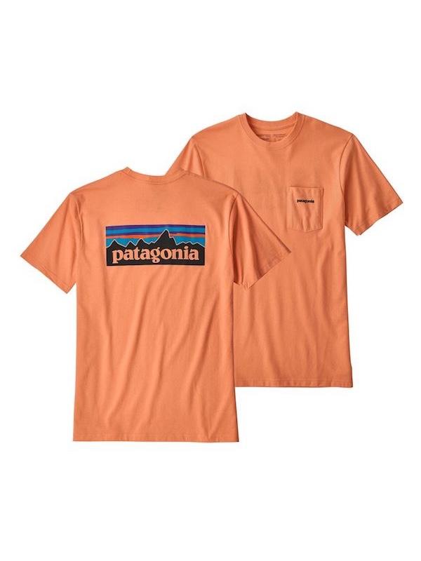 画像1: PATAGONIA パタゴニア/ メンズ・P-6ロゴ・ポケット・レスポンシビリティー PCHS