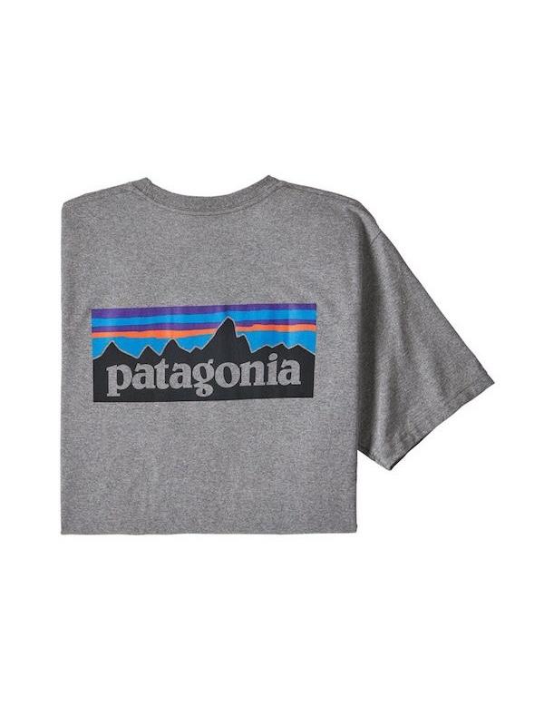 画像1: PATAGONIA パタゴニア/ メンズ・P-6ロゴ・レスポンシビリティー GLH
